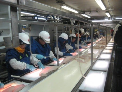 Alaskan Fish Processing Plant