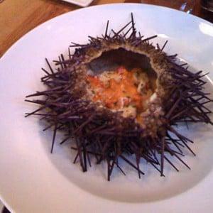 Sea Urchin Appetizer