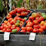 farm-stand-thumbnail