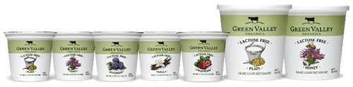 Lactose-Free Organic Yogurt & Kefir