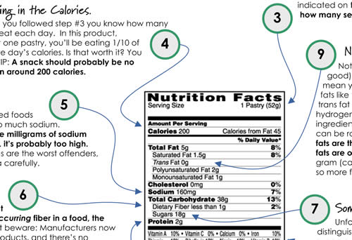 Nutrition Guide Sample