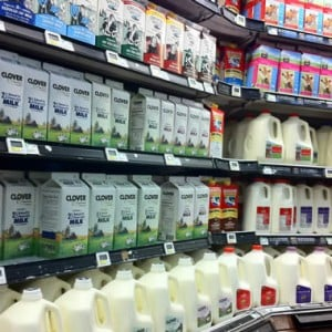 Choosing what type of milk to drink