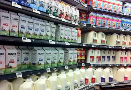 Choosing what type of milk to drink