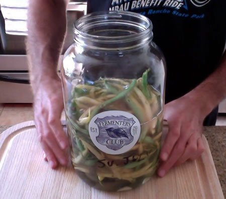 Fermented Garlic Dilly Beans