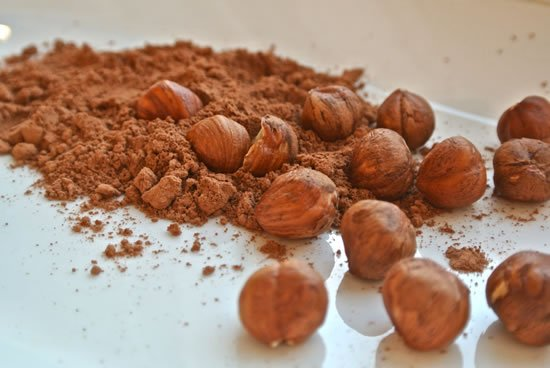 Homemade Chocolate, Cocoa Powder and Hazelnuts