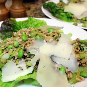 Italian Farro Salad with Fava Beans