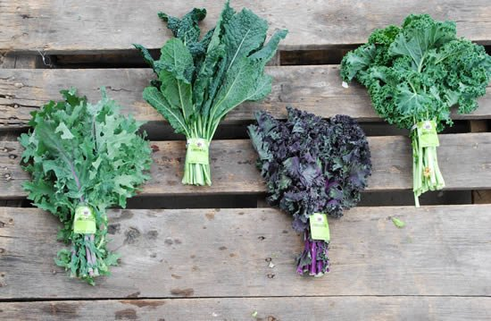 Cooked kale vs raw kale nutrition