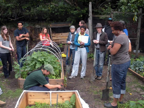 Urban Farming Classes