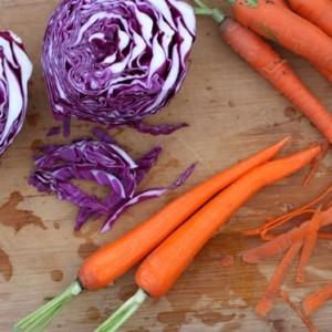 Cabbage, Carrots, and Raisins Citrus Salad