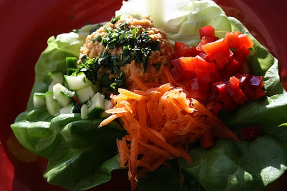 Almond-Crusted Curry Chicken Lettuce Wraps