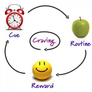 The Habit Cycle: Cue, Routine, Reward, Craving