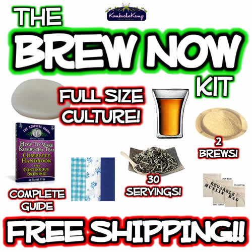 The New Brew Now Kit by Kombucha Mamma Free Shipping Square