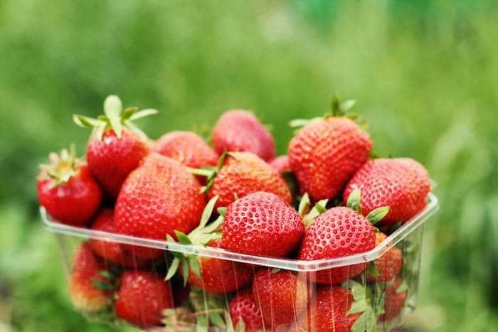 Why Organic Matters