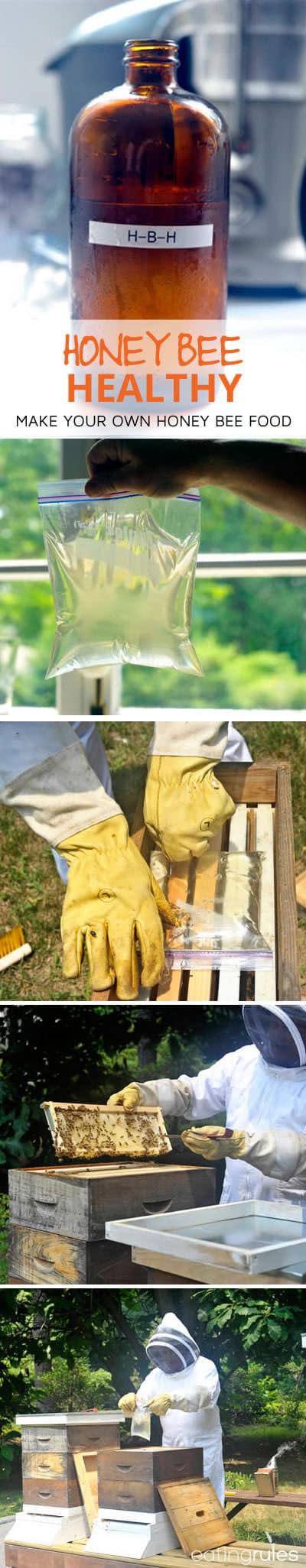 Honey Bee Healthy Honeybee Food